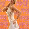 PPSE2006