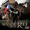 wanderlei-silver-44