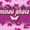 minou-photo