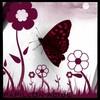 papillon-acide