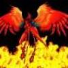 phoenix95200
