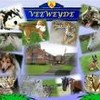 0o-animaux2007-o0