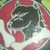 ultras-brave-wolf