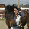 lovehorsedu06700