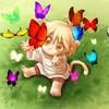le-temps-des-papillons