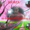 m-hamza-92
