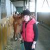 la-fan-folle-des-chevaux