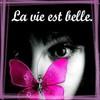 xx-nouvel-vie-xx76