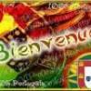 portugais1511