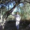 mahindra15