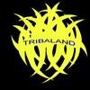 TRIBALAND