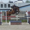 vente-chevaux-du-loir