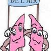 DelAir2007
