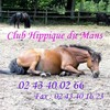 club-hippique-du-mans-72