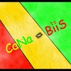 CaNa-BiiS