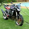 rider-marcus