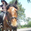 laura-julie-horses-2