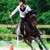 Cavalerie-equestre
