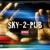 sky-2-pub