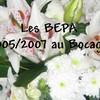 bepa0507