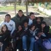achref07150