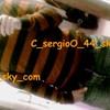c-sergioo44