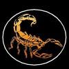 scorpions057