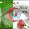 algerie029