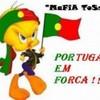portugais-du-78