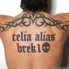 brek1