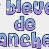 bleuetsdehanches28