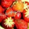 lili-la-fraise