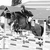 pony-gaining