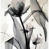 juliette-blanc