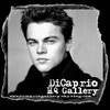 dicapriogallery