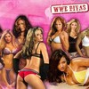 wwedivascatch