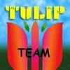 tulip-team