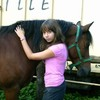 magnifique-chevaux