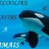 orcalcoolike
