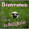 bulle2glace