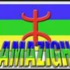 amazigh213