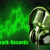 nisiark-record