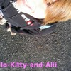 HelloKitty-and-Alii
