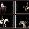equipe-tagada-poney