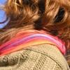 hippiecolor