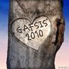 gafsis2010