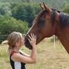 Horse-fOrever47