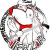 vierzonhockey