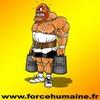 strongman44