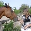 x-i-love-horses-du-66-x